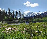 Frühlingserwachen in den Bergen